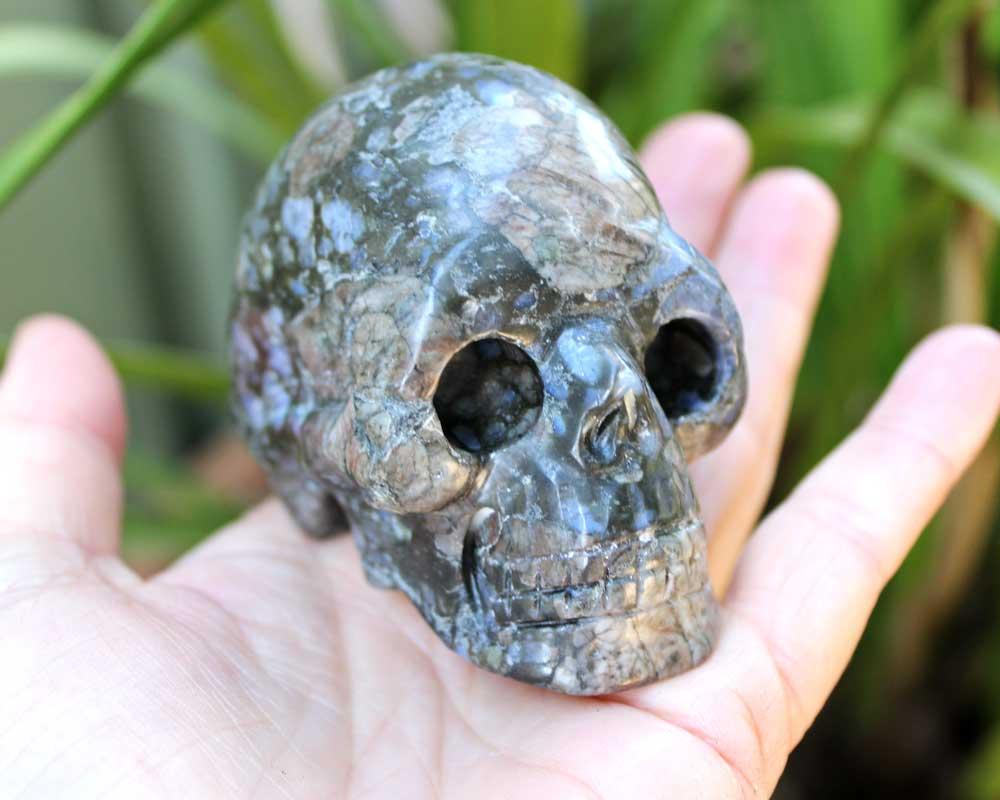 Llanite-skull