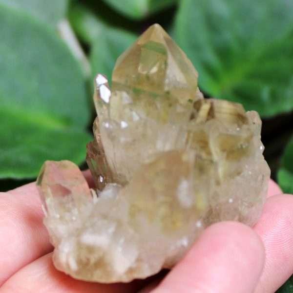 kundalini-quartz_9_G_c01249